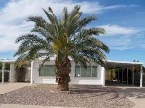 214 S Amulet Ave Mesa, AZ 85208